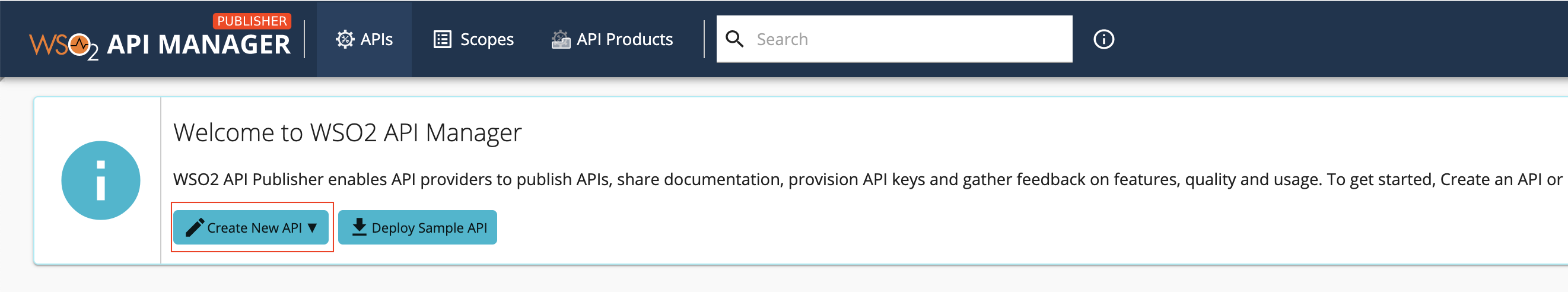 API Publisher home page